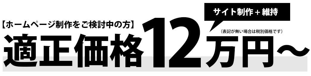 適正価格12万円~サイト制作+維持管理できます!